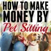 How to Make Money Pet Sitting.