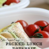 The Super Easy Packed Lunch Database with Hot and Cold Options!