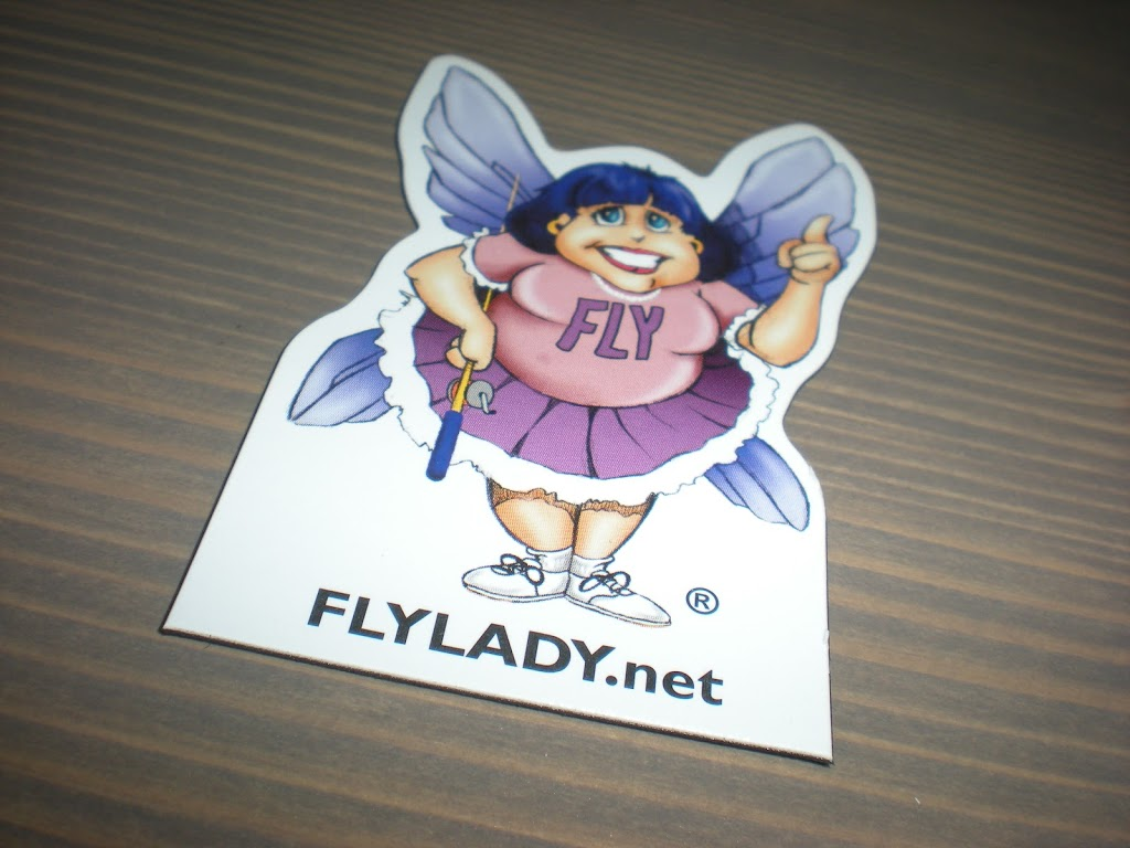 The Importance of FlyLady in Transforming your Life