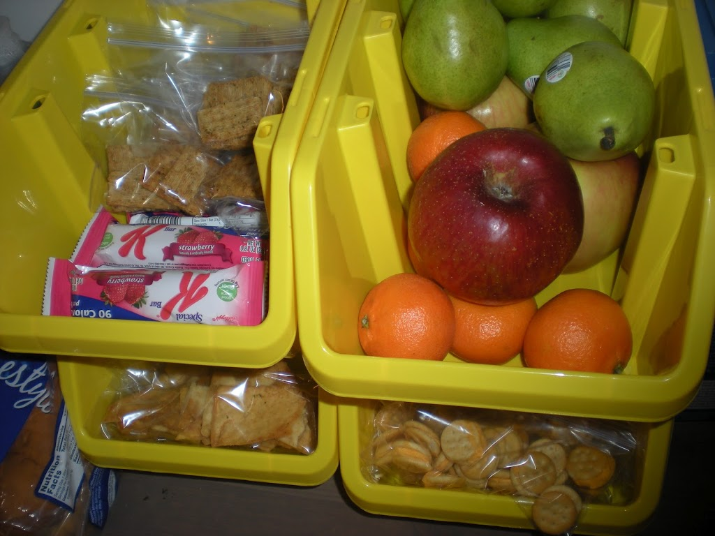 Dollar Store Bins | Organizing with Containers from Dollar Tree | The Busy Budgeter