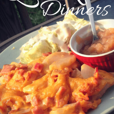 home cooked meals under $20