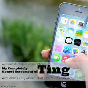 My Review of Ting Cell Service and How We Save $111/Month.