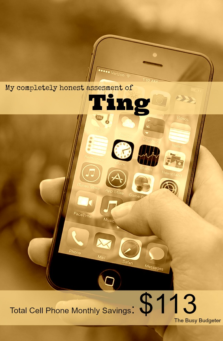 How much money can you save with Ting cell service?