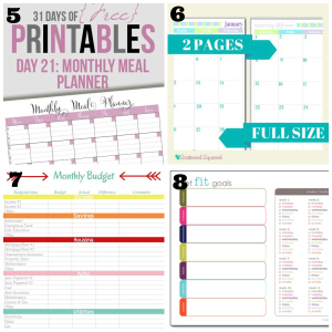 image regarding Diy Planner Pages referred to as Do-it-yourself Lifetime Planner for Considerably less than $5! - The Occupied Budgeter
