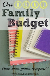 Sample Budget: Our Real Family Budget!