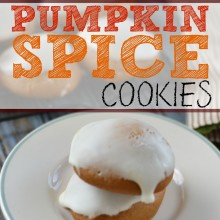 Super Easy Pumpkin Spice Cookies