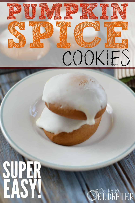 Pumpkin Spice Cookies (Super Easy!)