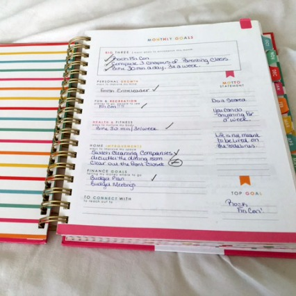 life planner reviews