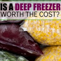 Is a Deep Freezer Worth the Cost?
