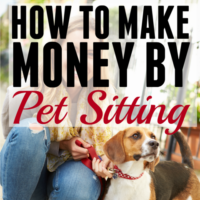 How to Make Money Pet Sitting.