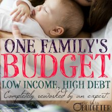 One Family's Budget with Low Income and High Debt, Completely Reworked into a Long Term Financial Guide by an Expert.