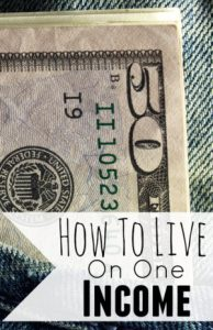 how-to-live-on-one-income-picture-300x464