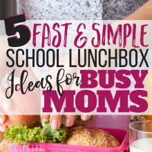 5 Fast & Simple School Lunchbox Ideas for Busy Moms