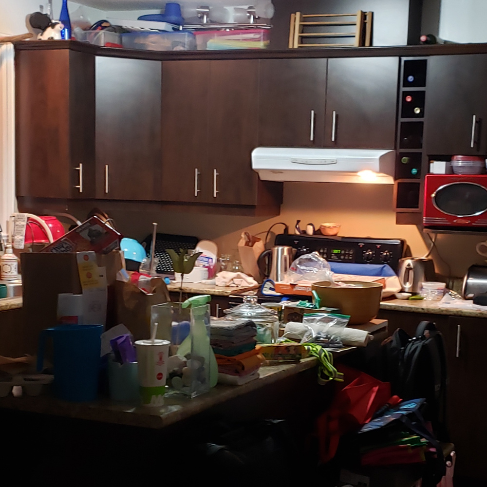 Messy House displaying a messy kitchen and kitchen counters with clothing, trash, organizing containers and dishes in this trashed house.
