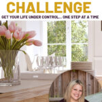 Clean dining room in the background and a picture of Rosemaroe Groner. Text overlay says Free Life Management challenge, Get your life under control one step at a time.